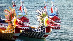 Previo botes dragon